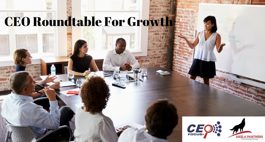 CEO Roundtable For Growth Cover6