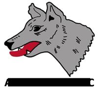 Akela Partners logo