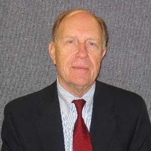 Djoerd Hoekstra, Consultant