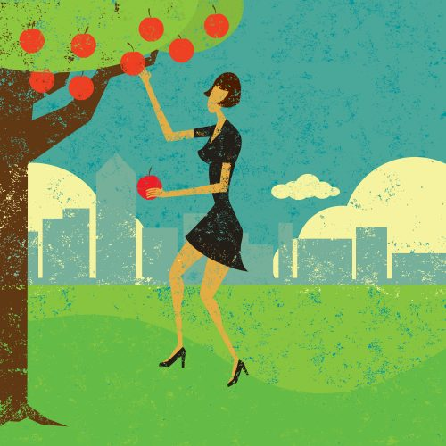 Low Hanging Fruit; A Recipe For Dessert Or Business Success?